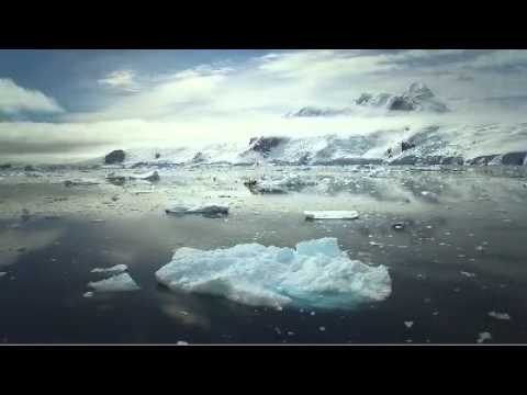 The Dream of Antarctica- Alive is Awesome