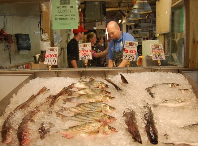 Harbor Fish Market in Portland, Maine. Photo by Esha Samajpati. All rights reserved ©