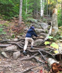 Hiking Mt Jo in Lake Placid, New York