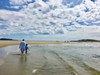 Maine - Pristine Beaches and Lobster Tales