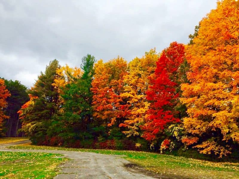 Upstate New York in Fall