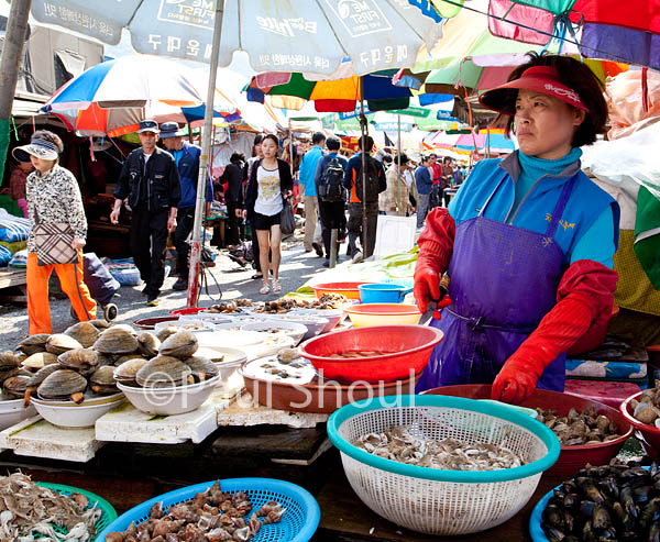 Busan fish market south Korea
