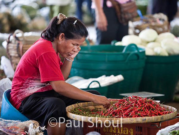 sorting hot peppers thailand talad market