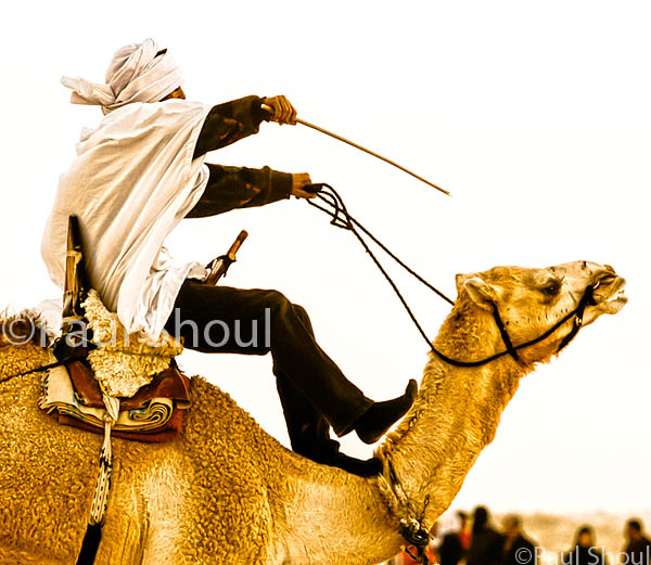 camel racer at the  Sahara Festival in Douz, Tunisia