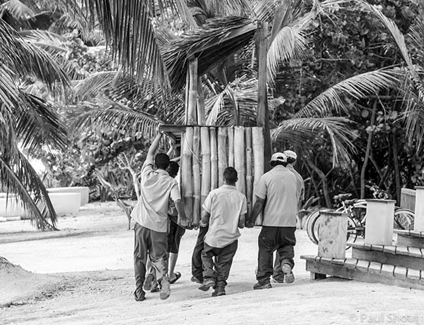 hotel workers in belize remove a thatched bar from the beach photo by paul shoul