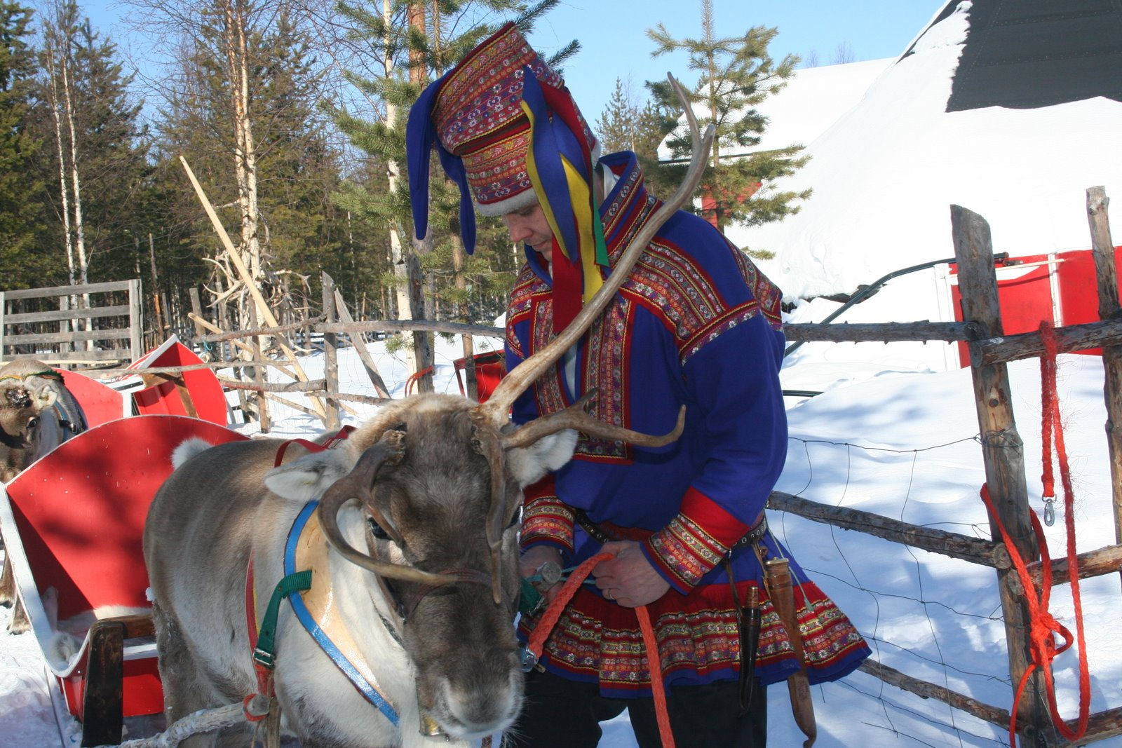 Sammy The Sami Lapland Be Our Guest