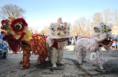 chinese new year of the pig dancers florence ma. great wall restaurant